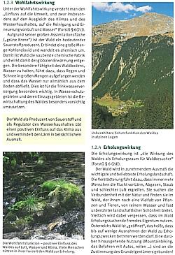 Handstanger Zeitgemäße Waldwirtschaft Handbuch für Forstwirtschaft/&Holzarbeit