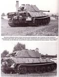 Tiger im Kampf - Die Einsätze in der Normandie