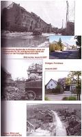 Reiner Monnartz: Hürtgenwald 1944/1945 Militärgeschichtlicher...