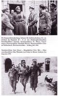 Panzermeyer: Grenadiere