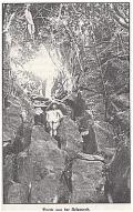 Kriegsbilder aus Ponape - Erlebnisse eines deutschen Seeoffizier