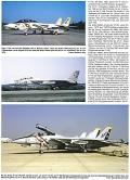 Grumman F-14 Tomcat - Eine Katze beschützt die Flotte