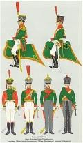 Die sächsische Armee 1810-1813