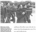 Sous le Signe SS - Französische Freiwillige in der Waffen-SS