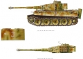 Tiger im Kampf - Band I